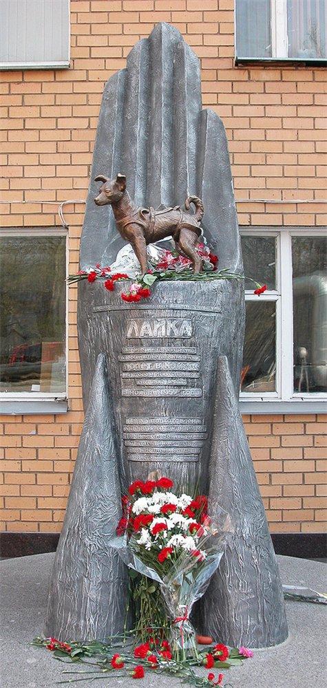 lajka_pomnik